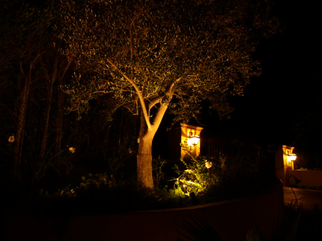 Thousand Oaks Exterior Lighting